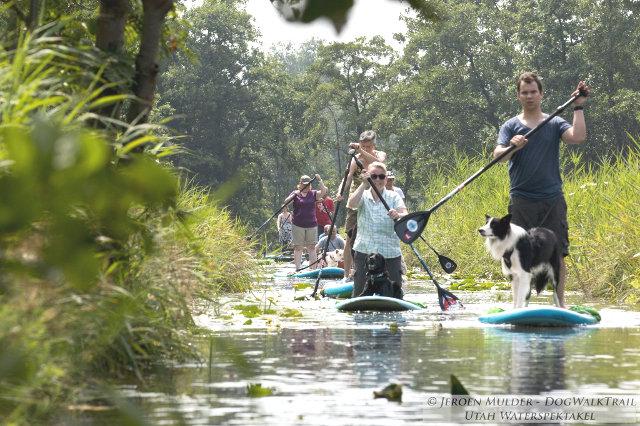9-dogwalktrail-nederland-sup-hond-loosdrecht